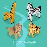 Exotic Animal Set Isometric 3d Design Royalty Free Stock Photography