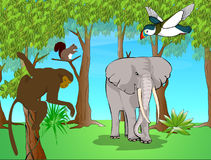Exotic animals. Illustration of some exotic animals Royalty Free Stock Photo