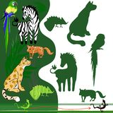 Exotic animals. Find silhouettes of exotic animals Stock Photography