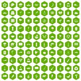 100 exotic animals icons hexagon green. 100 exotic animals icons set in green hexagon isolated vector illustration Stock Photos