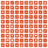 100 exotic animals icons set grunge orange. 100 exotic animals icons set in grunge style orange color isolated on white background vector illustration royalty free illustration