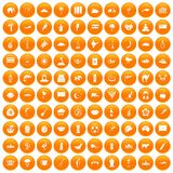 100 exotic animals icons set orange. 100 exotic animals icons set in orange circle isolated vector illustration vector illustration
