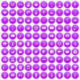 100 exotic animals icons set purple. 100 exotic animals icons set in purple circle isolated vector illustration Royalty Free Illustration