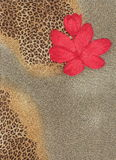 Exotic background. Floral background in exotic tropic style Stock Photos