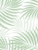 Exotic background with palm leaves for design in hipster style. The leaves in the background. Leaves of palm tree. Silhouette of palm leaves. Hipster royalty free illustration