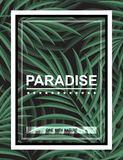 Exotic background with palm leaves and frame for design hipster Stock Photos