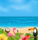 Exotic Background with Toucan, Pink Flamingo Royalty Free Stock Photography