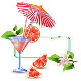 Exotic banner with juicy slices of grapefruit Royalty Free Stock Image