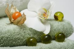 Exotic Bath Stock Images