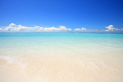 Exotic beach. Under a blue sky Royalty Free Stock Photos