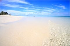 Exotic beach. Under a blue sky Stock Photography