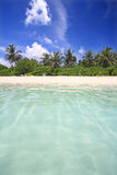 Exotic beach. Tropical sea and beach, Maldives Royalty Free Stock Photography