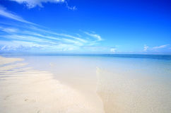 Exotic beach. Empty beach under a blue sky Royalty Free Stock Photo