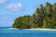 Exotic beach with dense vegetation Stock Photography