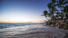 Exotic Beach in Dominican Republic. Punta Cana stock video footage