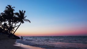 Exotic Beach in Dominican Republic. Punta Cana stock footage