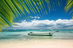 Exotic Beach in Dominican Republic. Punta Cana Stock Photo