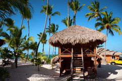 Exotic Beach in Dominican Republic, Punta Cana Royalty Free Stock Photography