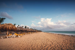 Exotic Beach in Dominican Republic, Punta Cana Royalty Free Stock Image