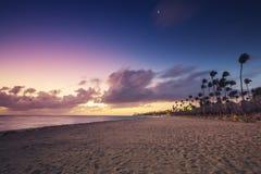 Exotic Beach in Dominican Republic, Punta Cana Royalty Free Stock Photos