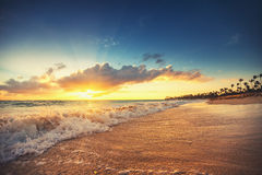 Exotic Beach in Dominican Republic, Punta Cana Royalty Free Stock Images