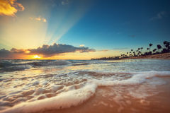 Exotic Beach in Dominican Republic, Punta Cana. Sunrise shot Royalty Free Stock Image