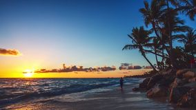 Exotic Beach in Dominican Republic, Punta Cana stock video footage