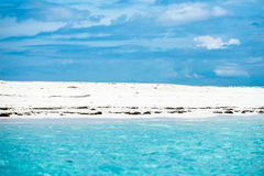 Exotic beach. Image of an exotic beach in Zanzibar Island, Indian Ocean Royalty Free Stock Photography