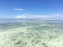 Exotic beach on the Indian Ocean. Zanzibar. Transparent water and blue sky. beauty and exoticism of Africa royalty free stock photo