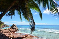 Exotic beach Royalty Free Stock Photography