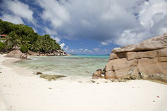 Exotic beach and sea. In the South Seas Royalty Free Stock Photos