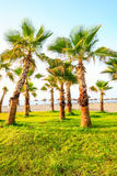 Exotic Beach Southern Spain Royalty Free Stock Image