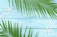 Exotic beach top view concept with tropical palm leaf branch and starfishes. Frame with space for banner text.  stock photography