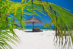 Exotic beach under a blue sky Royalty Free Stock Photos