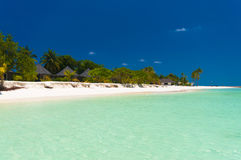 Exotic beach under a blue sky Royalty Free Stock Image