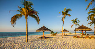 Exotic beach under a blue sky Royalty Free Stock Photo