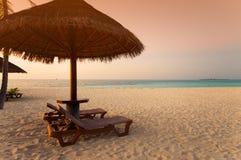 Exotic beach under a blue sky Stock Photo