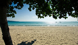 Exotic beach. Under the shade of a tree on an exotic beach in Bali, Indonesia Stock Photos