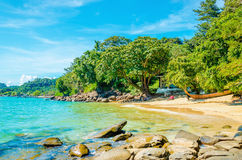 Exotic beach with white sand and high palm trees Stock Photography