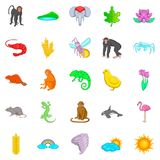 Exotic beast icons set, cartoon style. Exotic beast icons set. Cartoon set of 25 exotic beast vector icons for web isolated on white background Stock Image