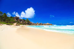 Exotic beautiful beach Stock Images