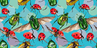 Exotic beetle bronzovka wild insect pattern in a watercolor style. Full name of the insect: beetle bronzovka. Aquarelle wild insect for background, texture royalty free illustration
