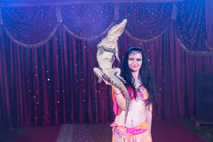 Exotic Belly Dancer Holding Small Crocodile Stock Images