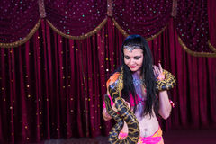 Exotic Belly Dancer with Large Snake on Stage Royalty Free Stock Image