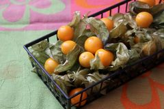 Exotic berries. Some exotic berries with the name physalis royalty free stock photo