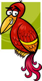 Exotic bird cartoon illustration Royalty Free Stock Images