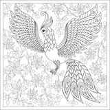 Exotic bird,fantastic flowers,branches, leaves.. Exotic bird,fantastic flowers,branches, leaves.Hand drawn Firebird for anti stress Coloring Page with high Stock Images