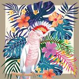 Parrot abstract color tropical pattern frame stock illustration