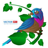Exotic bird sitting on a branch with leaves on white background. Vector illustration with hand draw to spring season. Greeting card design Royalty Free Stock Photo