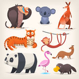 Exotic birds and animals. Set of popular colorful vector exotic animals and birds Royalty Free Stock Image